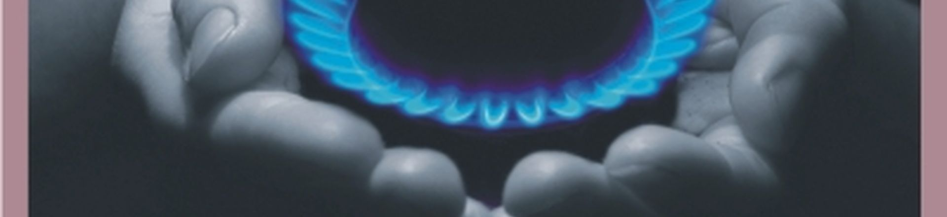Shale Gas Development
